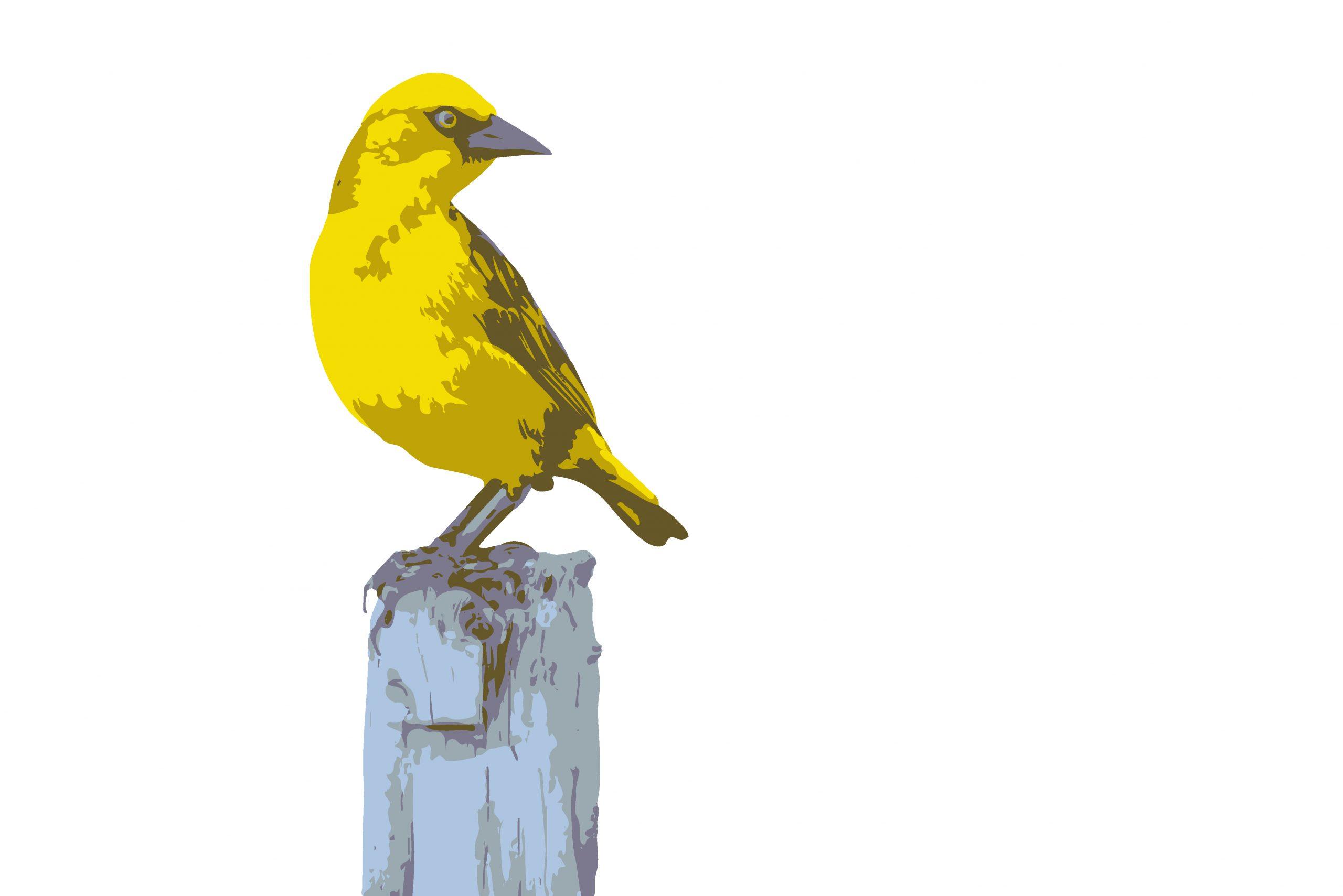 ILLUSTRATION of a bird sitting on the tree
