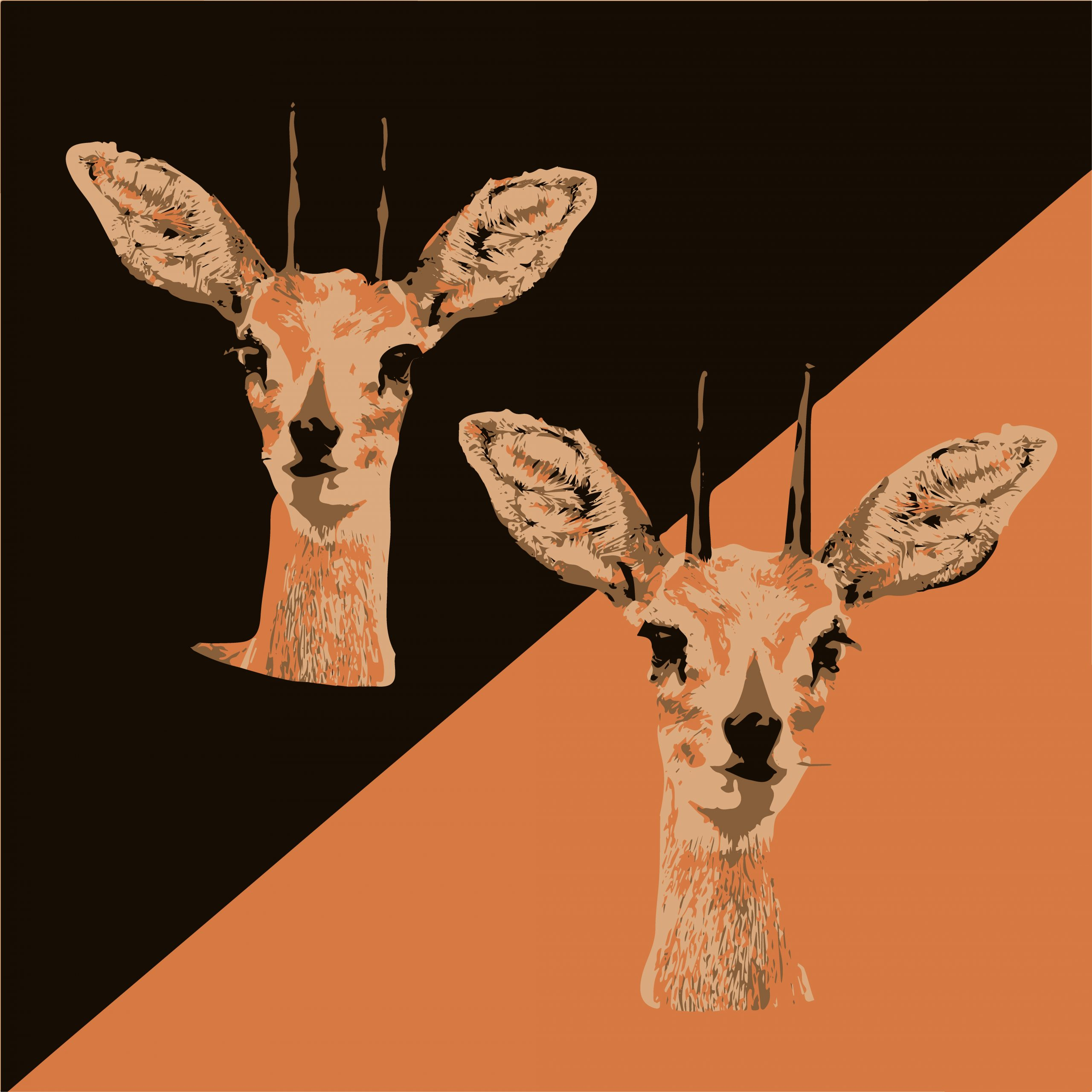 ILLUSTRATION of deer face
