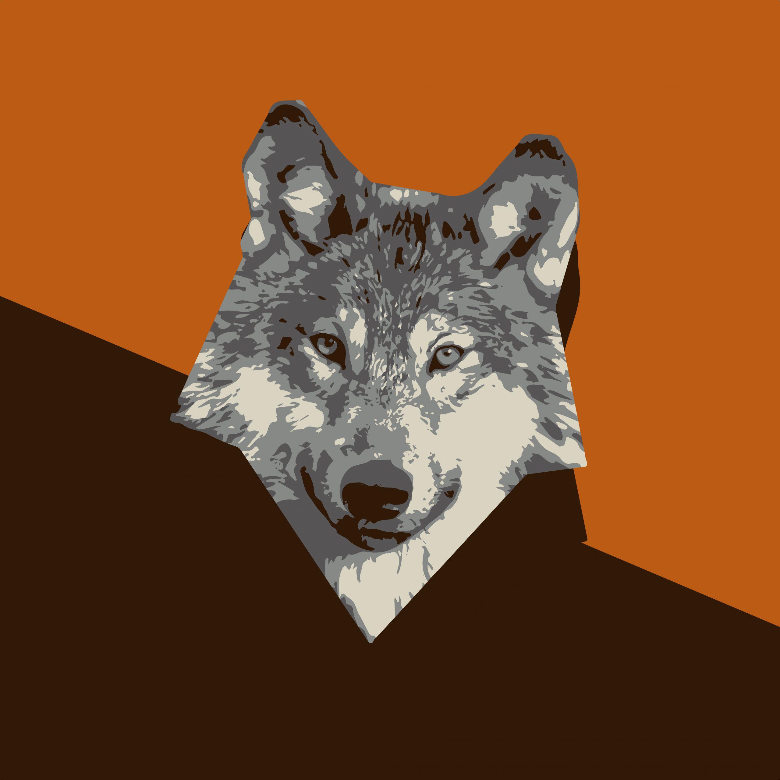 ILLUSTRATION of fox face
