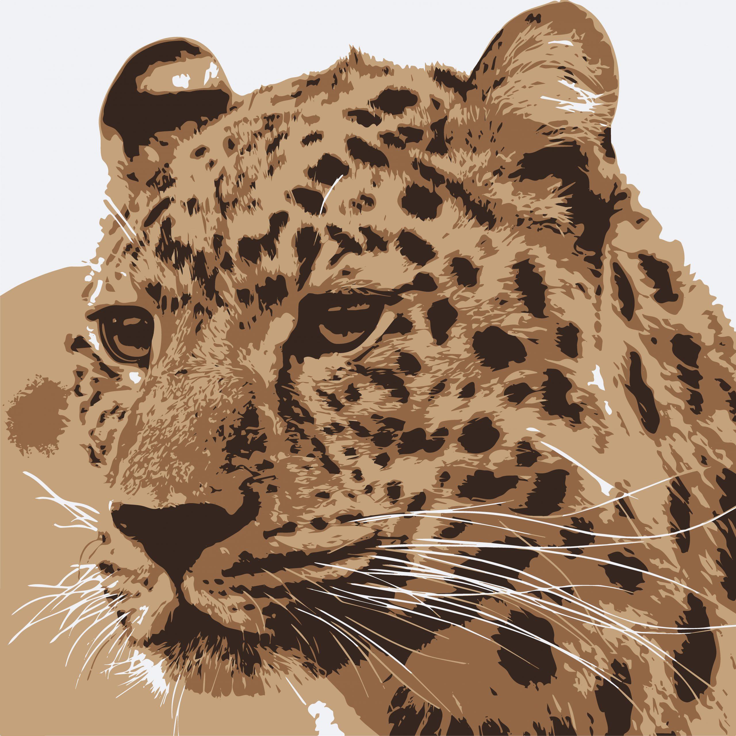 ILLUSTRATION of tiger face