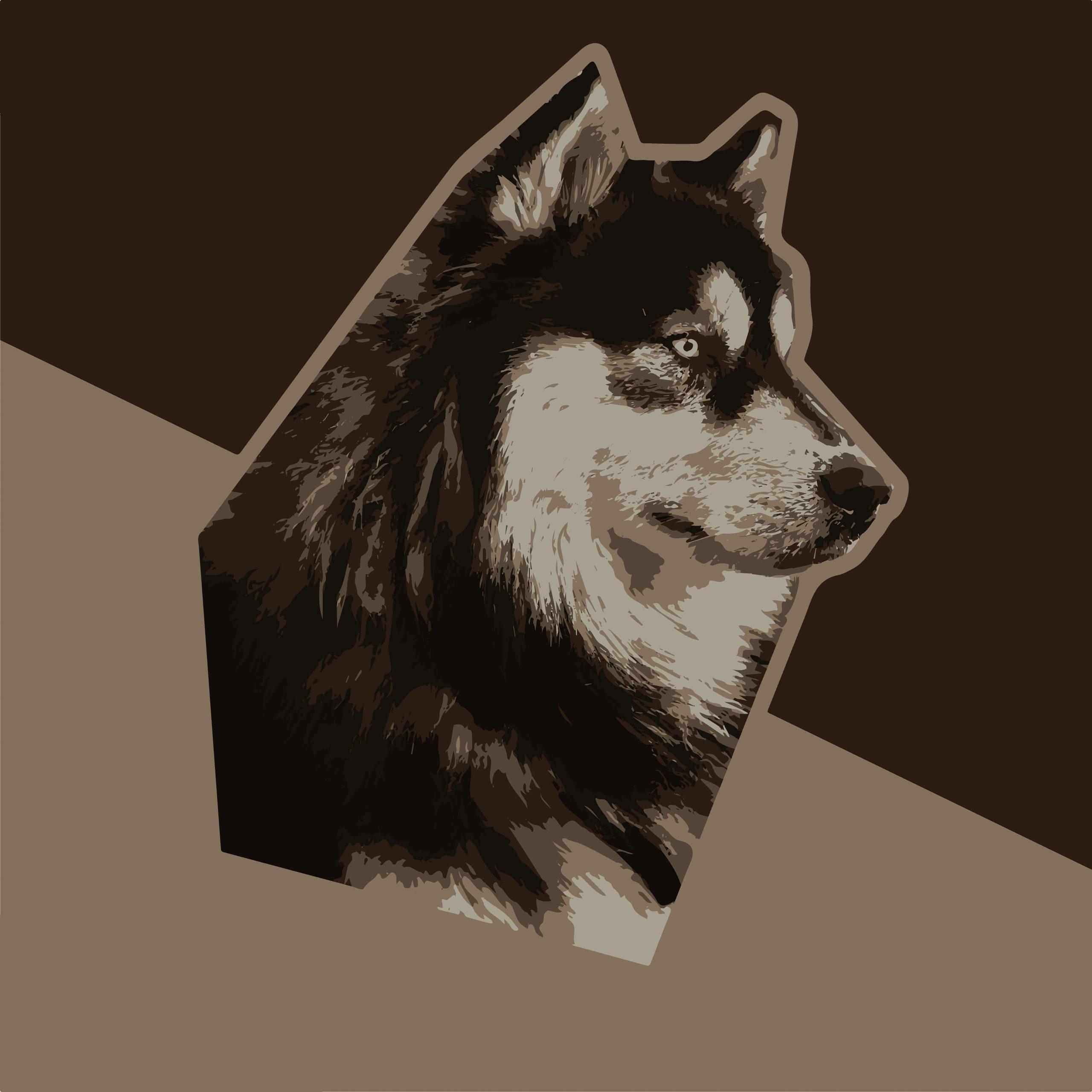 Illustration of Siberian husky dog