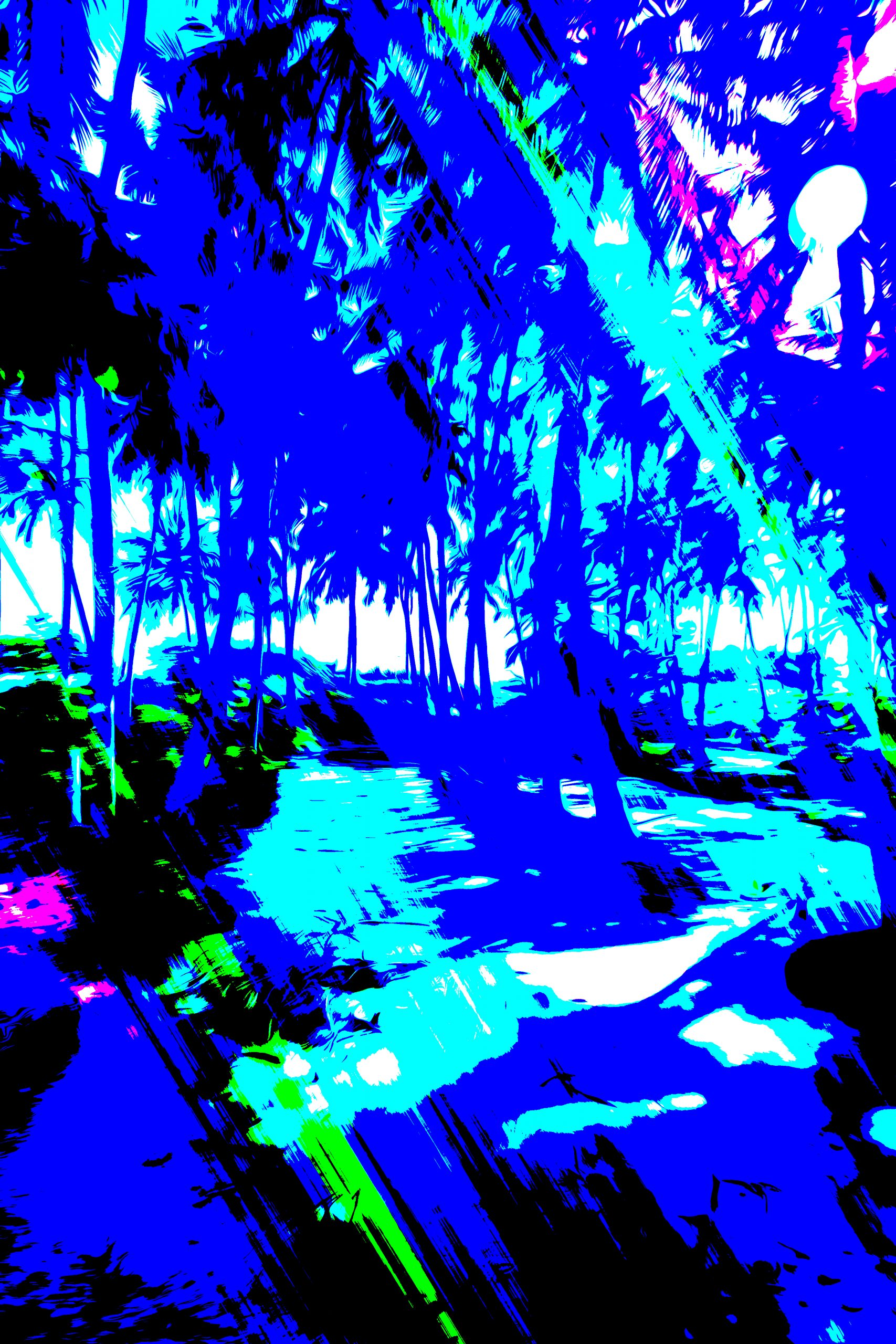 Illustration of a jungle