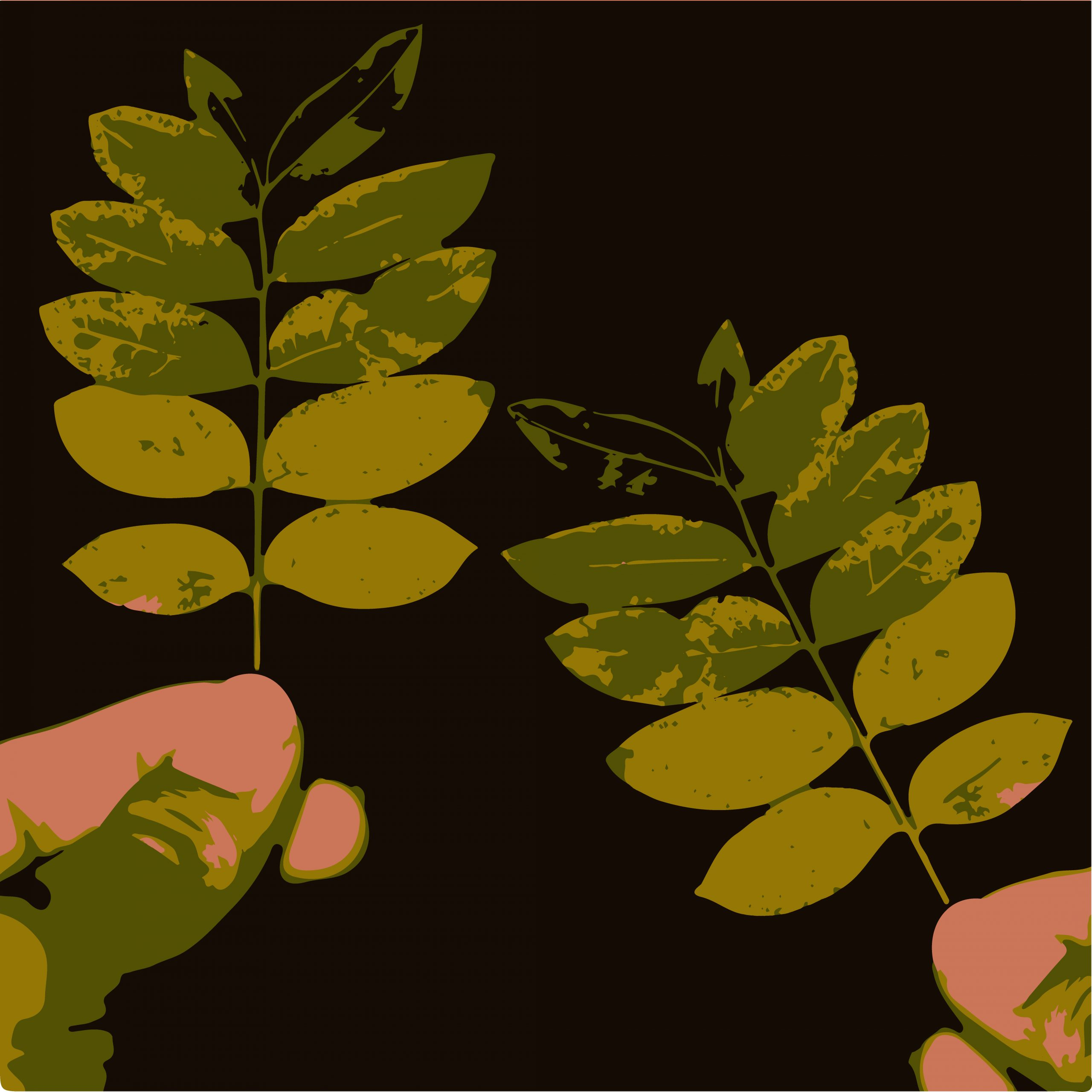 LEAF in hand ILLUSTRATION