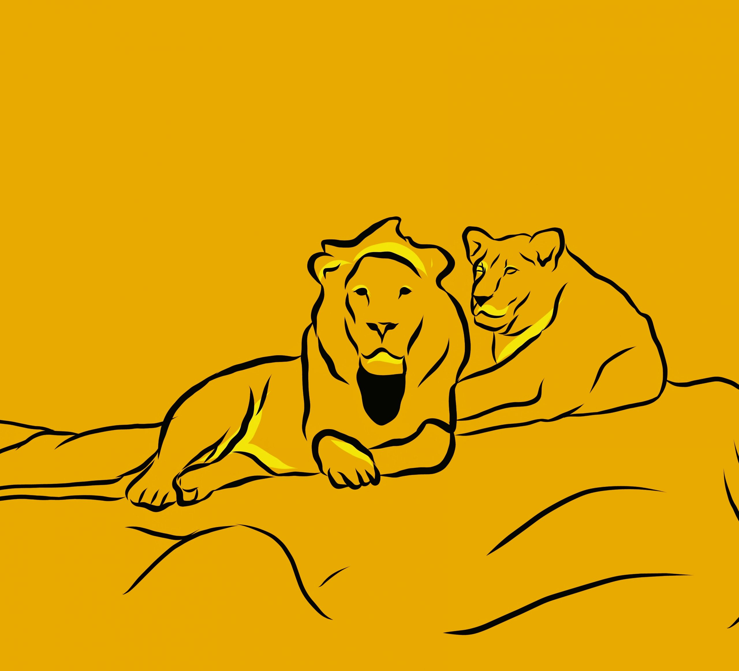 Lions illustration