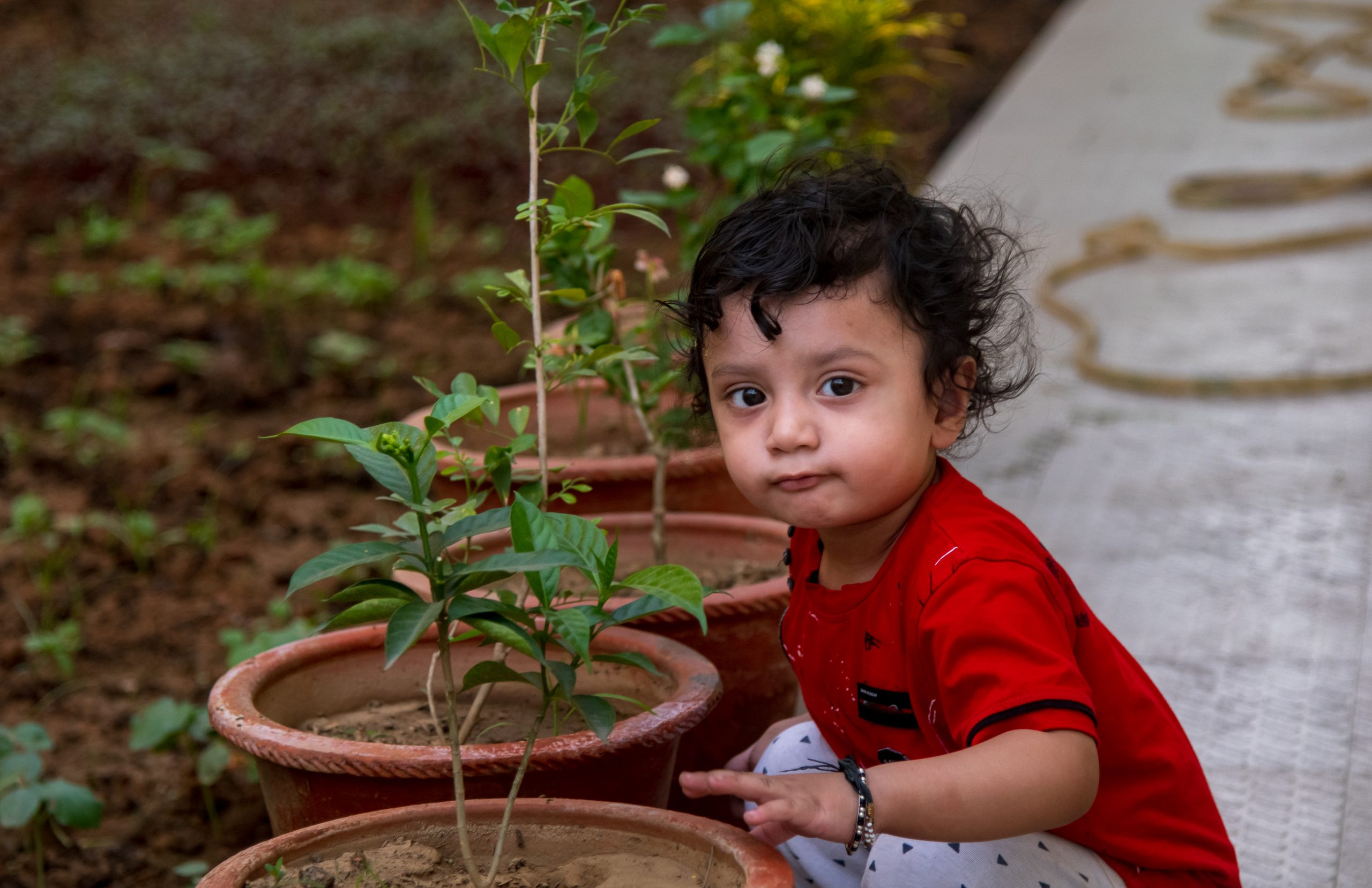 Little baby near the plant pot
