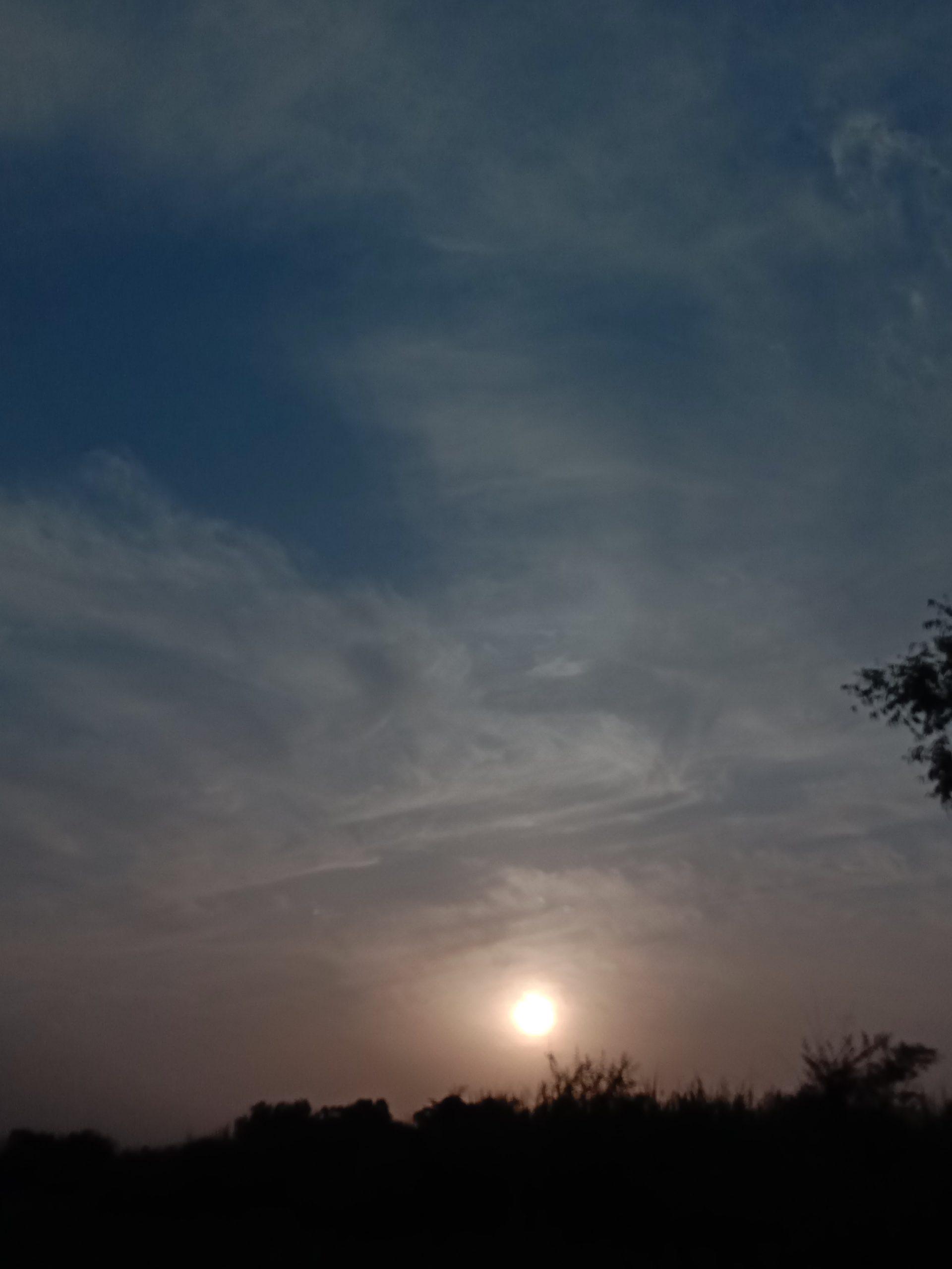 Silhouette nature
