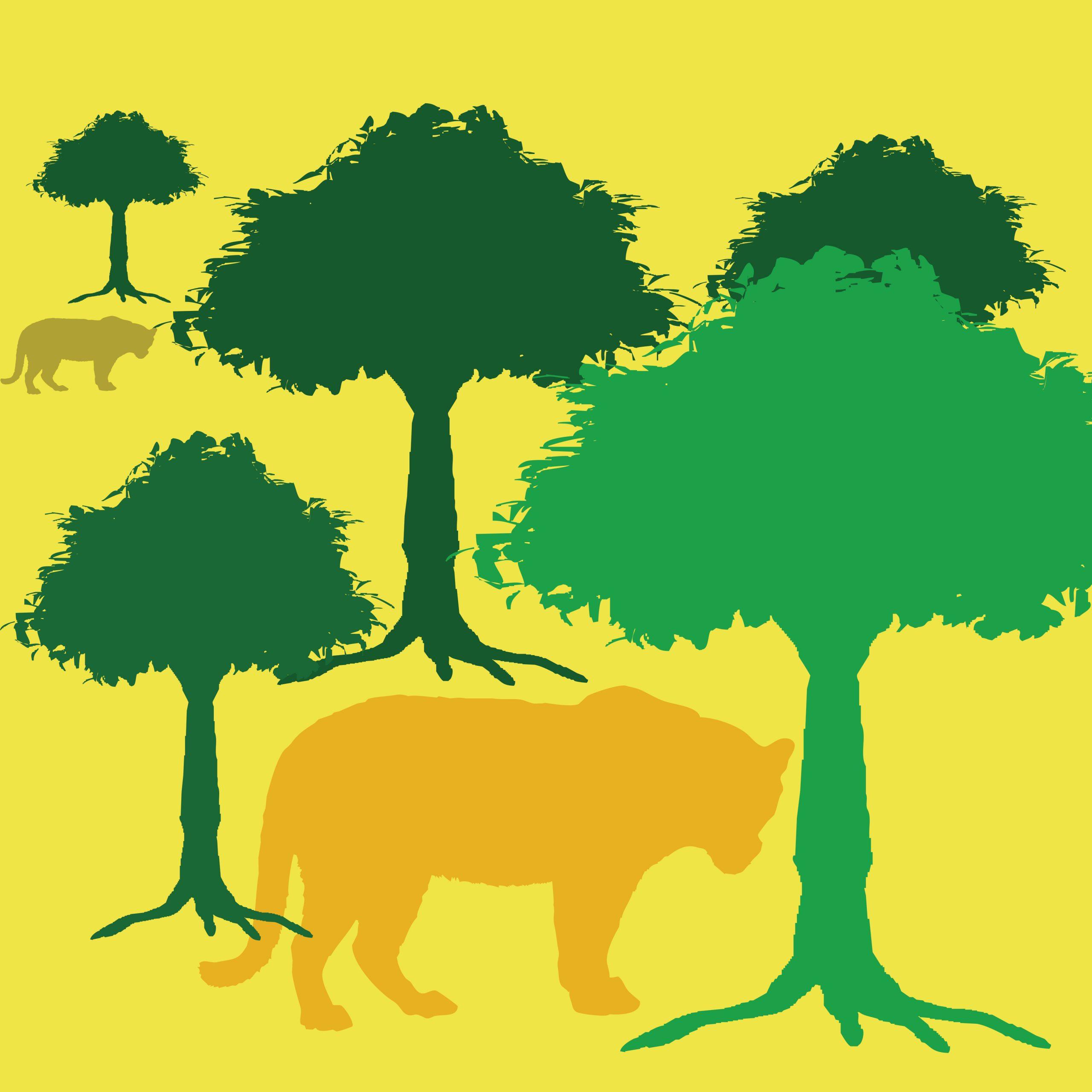 Tiger and tree illustration