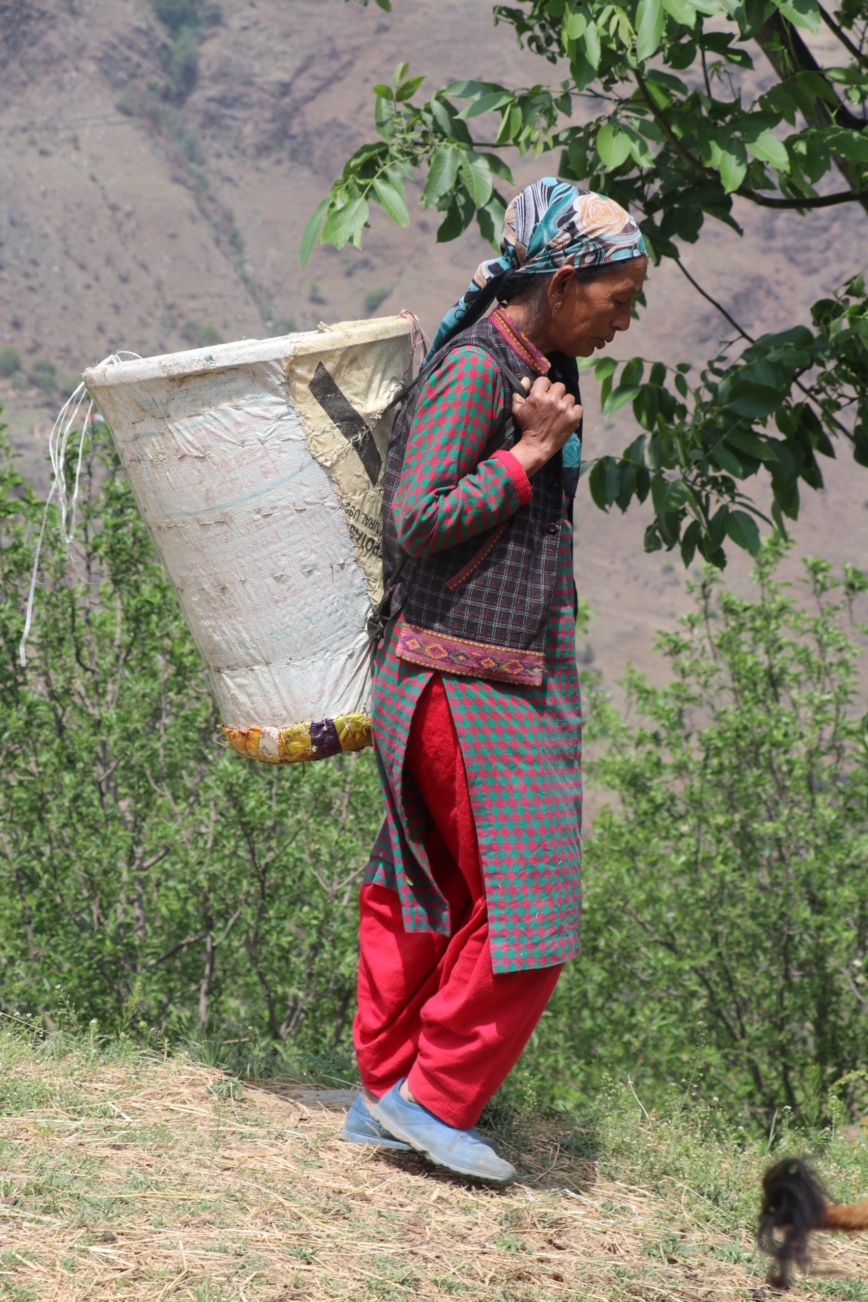 Woman with basket on her back