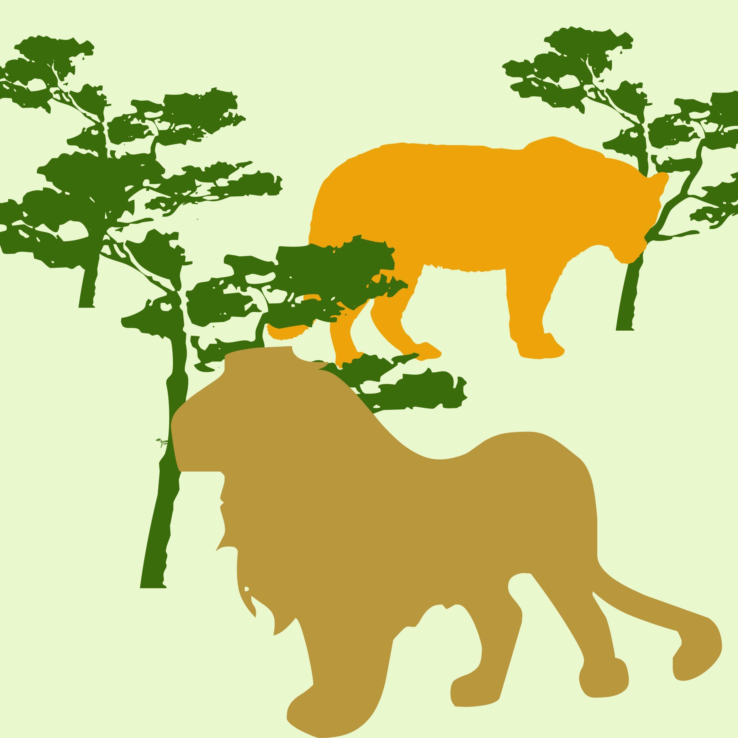 Lion and tiger illustration