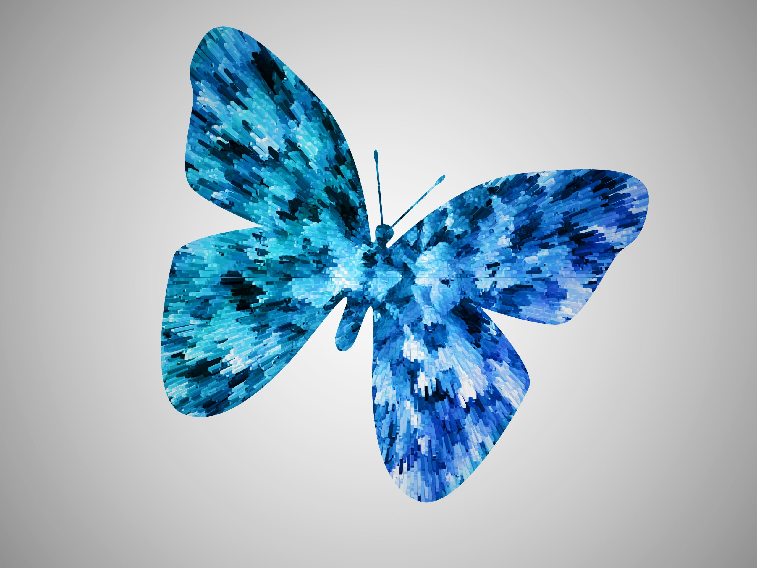 Butterfly wallpaper illustration