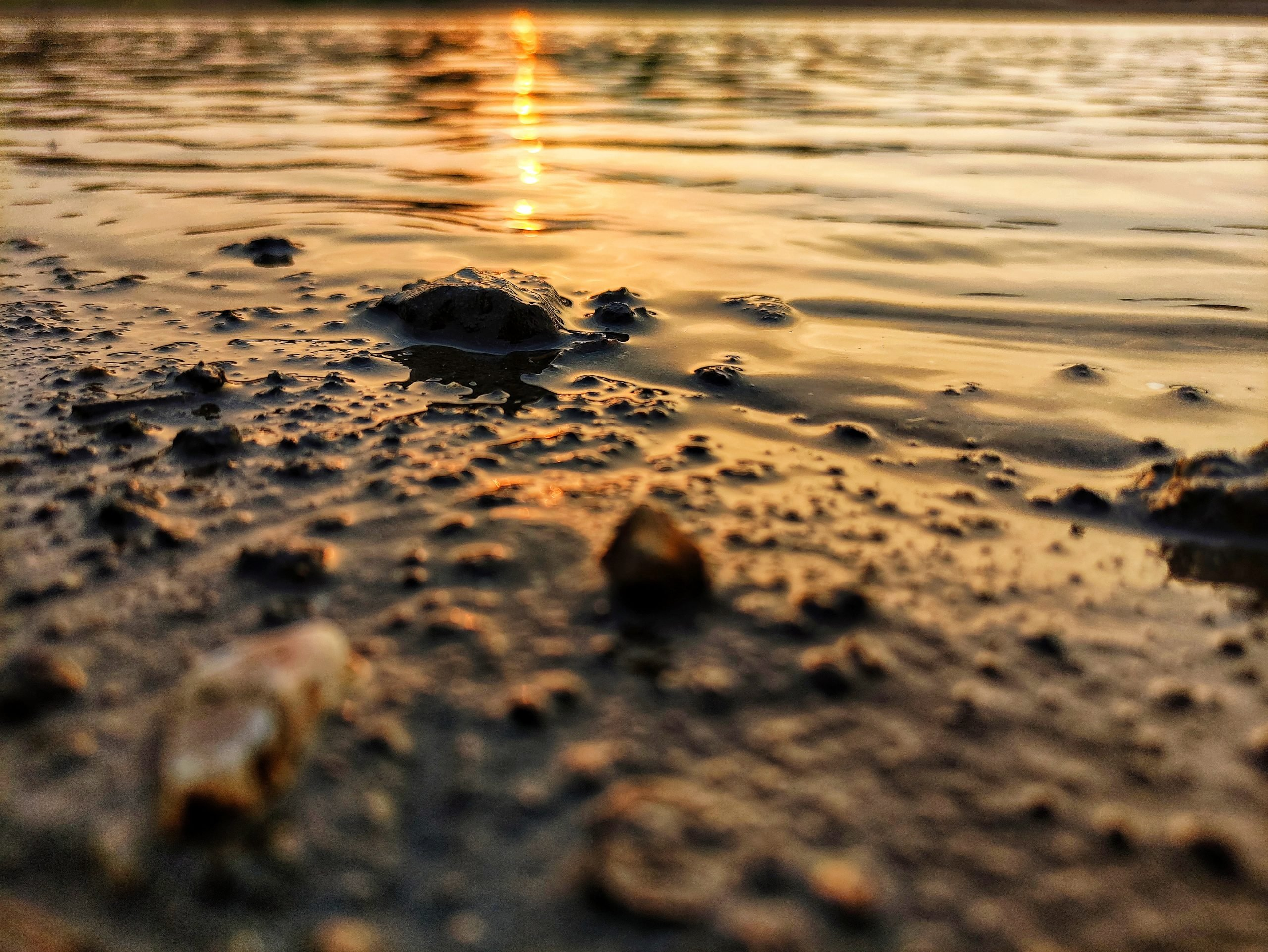 Sunrays falling on muddy water